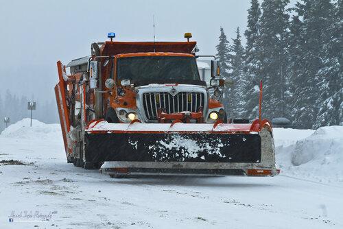 snowplows-2.jpg